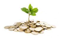 Экология и прибыль