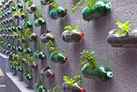 Что можно сделать из пластиковой бутылки